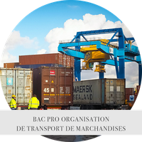 BACPRO ORGANISATION DE TRANSPORT DE MARCHANDISES2.png